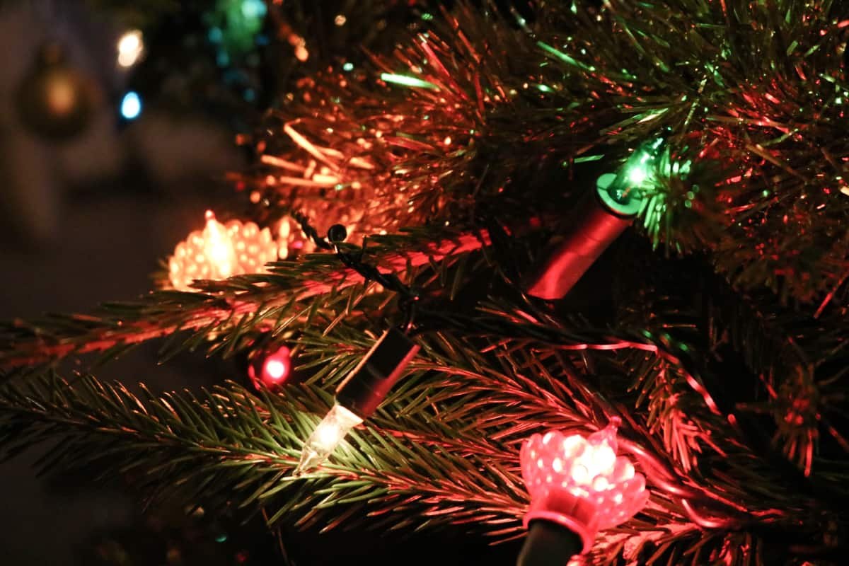 COVID-Safe Holiday Activities and Events in Ontario